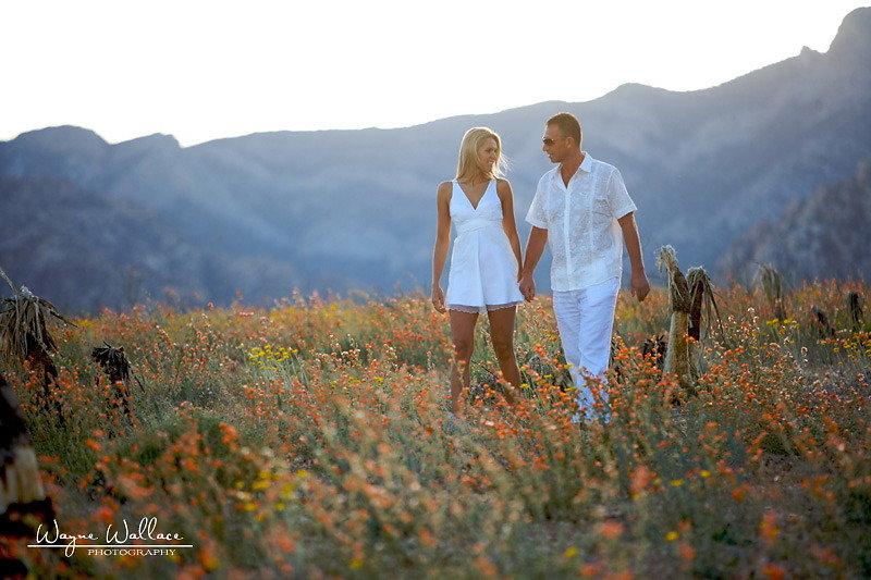 Wayne-Wallace-Photography-Las-Vegas-Wedding-Jowita-Mirek15.jpg